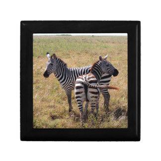 Zebras in Nairobi Kenia Geschenkbox