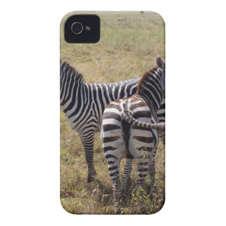 Zebras in Nairobi Kenia iPhone 4 Case-Mate Hülle