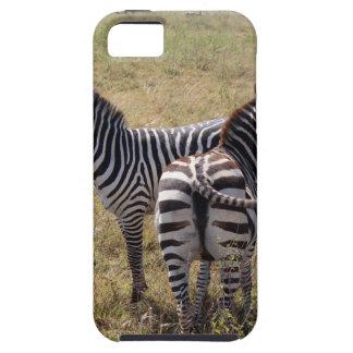 Zebras in Nairobi Kenia iPhone 5 Hülle