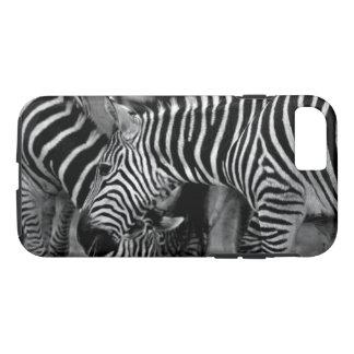 Zebras-Telefon-Kasten iPhone 8/7 Hülle