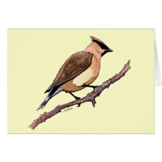 Zeder Waxwingvogel Karte