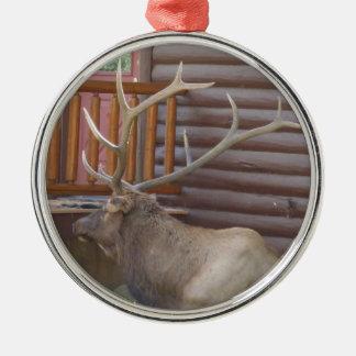 Zehn-Punktestier-Elch-Verzierung Silbernes Ornament