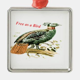 Zeichnen des Fasans frei als Vogel Silbernes Ornament