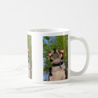 Zeigen Sie mir Intrige Kaffeetasse