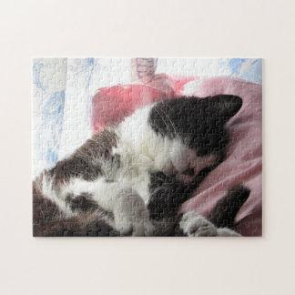 Zeit für ein Katzen-Nickerchen-Puzzlespiel Puzzle