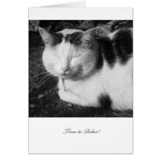 Zeit, sich Katze zu entspannen - leere Karte