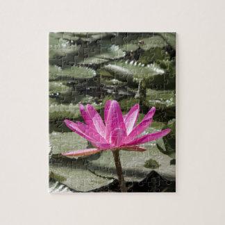 Zen-Lotos-Blumen-Teich Puzzle