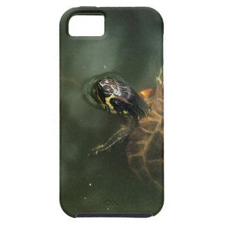 Zen-Schildkröte iPhone Fall Tough iPhone 5 Hülle
