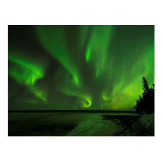 Zerstreute Aurora Postkarte