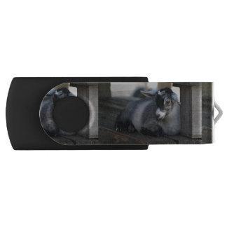 Ziege Swivel USB Stick 2.0