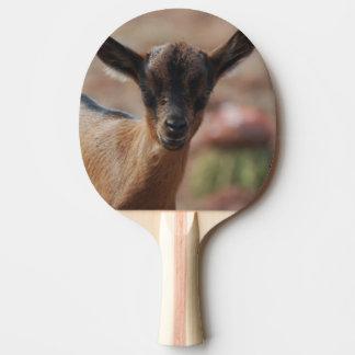 Ziege Tischtennis Schläger
