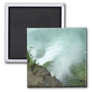 Ziegen-Insel-Dosenschildkröte-Punkt-Niagara- Quadratischer Magnet