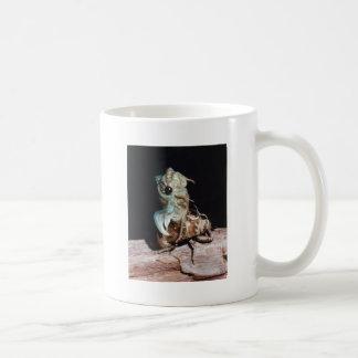 Zikade, die von der Muschel auftaucht Kaffeetasse