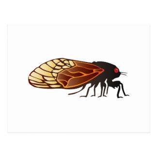 Zikade - Magicicada - Auftauchen des fantastischen Postkarte
