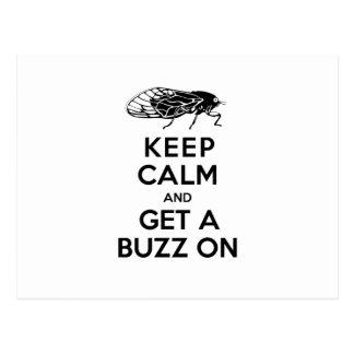 Zikaden - behalten Sie Ruhe und erhalten Sie ein Postkarte