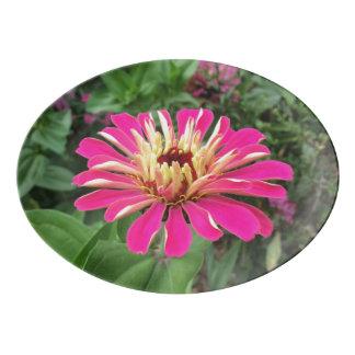 ZINNIA - vibrierende rosa und Sahne - Porzellan Servierplatte