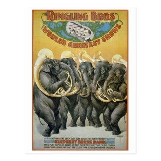 Zirkus-Elefant-Blaskapelle Postkarten