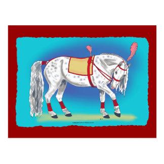 Zirkus-Pferd Postkarte
