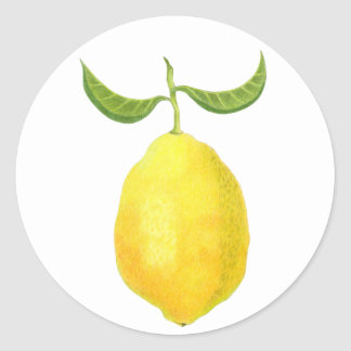 Zitronen-Aufkleber Runder Aufkleber