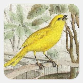 Zitronengelbe Vintage Illustration Quadratischer Aufkleber