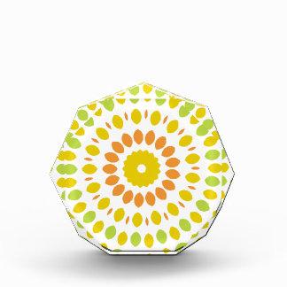 Zitrusfrucht-Mandala Acryl Auszeichnung