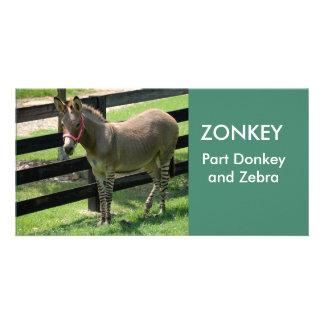 ZONKEY Teil Esel- und Zebra-Fotokarte Photokartenvorlage
