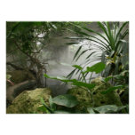 Zoo-Regenwald-Ausstellungs-Plakat