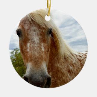 Zuckern Sie das Appaloosa-Pferd, _ Keramik Ornament