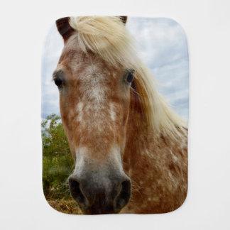 Zuckern Sie das Appaloosa-Pferd, _ Spucktuch