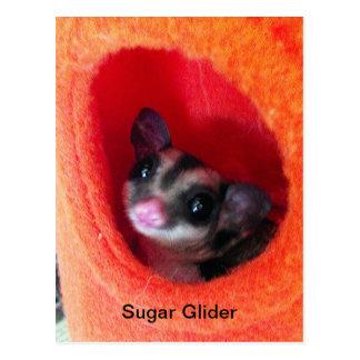 Zuckersegelflugzeug im orange hängenden Bett Postkarte