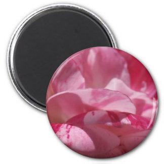 Zuckerstange-Blumenblätter Runder Magnet 5,1 Cm