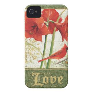 Zuhause für Weihnachtsamaryllis-Liebe iPhone 4 Hüllen