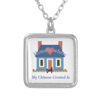 Zuhause ist der Crested Chinese Versilberte Kette