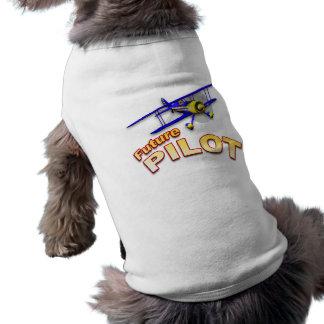 Zukünftiger Pilot Top