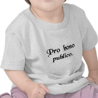 Zum Wohle der Öffentlichkeit T Shirt