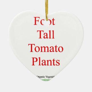Zünden Sie GemüseanbauFuß groß 16 amazon.com an Keramik Ornament