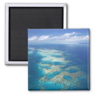Zunge-Riff, Great Barrier Reef Marinepark, Quadratischer Magnet