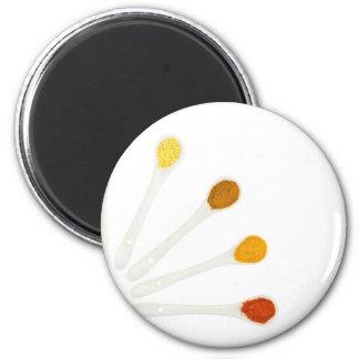 Zusammenstellungsgewürzgewürze auf runder magnet 5,7 cm