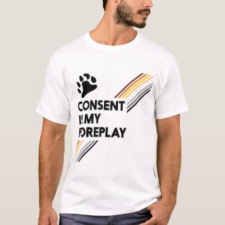 Zustimmung ist mein Foreplay-Licht T-Shirt