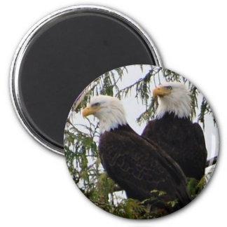 Zwei Adler in einem Baummagneten Runder Magnet 5,1 Cm