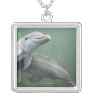 Zwei Delphine Unterwasser Versilberte Kette