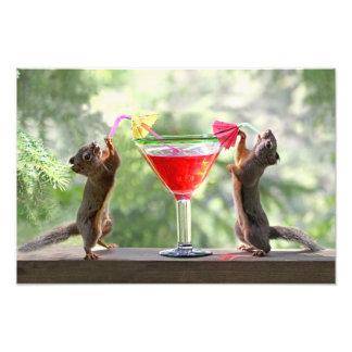 Zwei Eichhörnchen, die ein Cocktail trinken Photographie