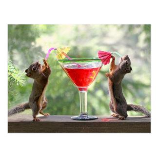Zwei Eichhörnchen, die ein Cocktail trinken Postkarte