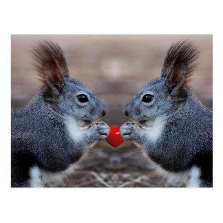 Zwei Eichhörnchen, die ein gelesenes Herz halten Postkarte