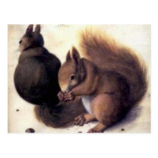 ` Zwei Eichhörnchen' durch Albrecht Dürer Postkarte