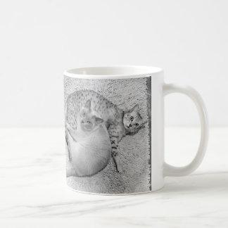 Zwei graue Katzen Kaffeetasse