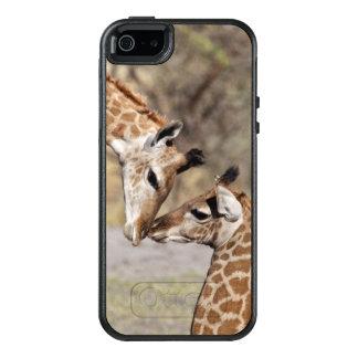 Zwei junge Giraffen OtterBox iPhone 5/5s/SE Hülle