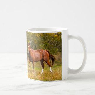 Zwei Kastanien-Pferde im Fall Kaffeetasse