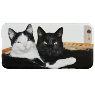 Zwei Katzen in der Liebe Barely There iPhone 6 Plus Hülle