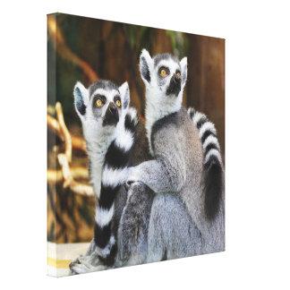 Zwei kleine Lemurs Leinwanddruck